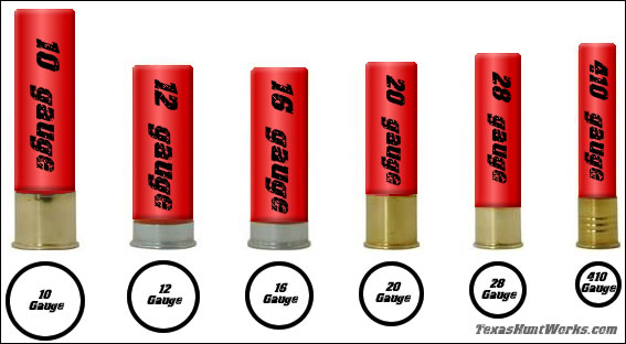 Shotgun Shell Guages